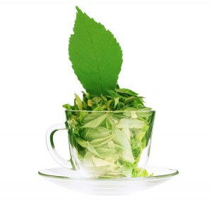 Green Tea Health Benefits matcha