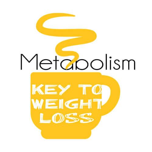 Metabolism-Matcha-Tea-Vs-Coffee
